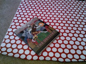 I started with one of Thor's presents.  A book seemed an easy starting place.